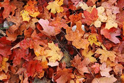 Autumn Floor Original by Paul Huchton