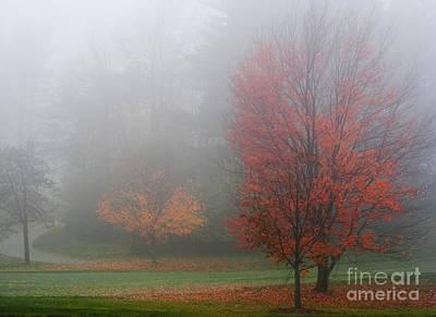 Photograph - Autumn Fog by Barbara McMahon