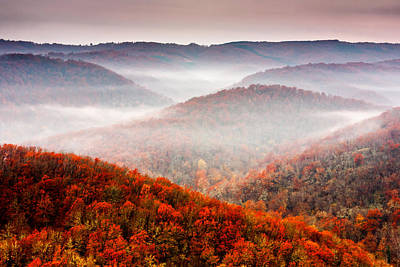 Meandering Photograph - Autumn Fogs by Evgeni Dinev