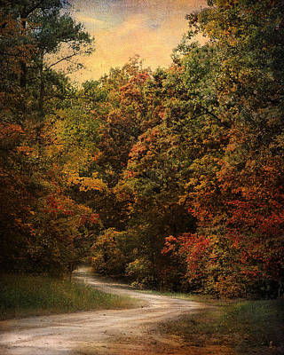 Autumn Forest 1 Art Print by Jai Johnson