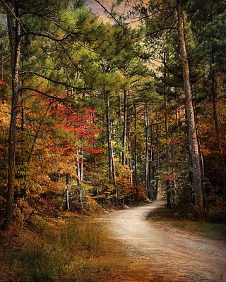 Autumn Scene Photograph - Autumn Forest 2 by Jai Johnson