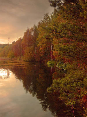 Autumn Photograph - Autumn Forest At The Pond by Nop Briex