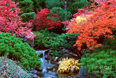 Autumn Garden Waterfall II Original