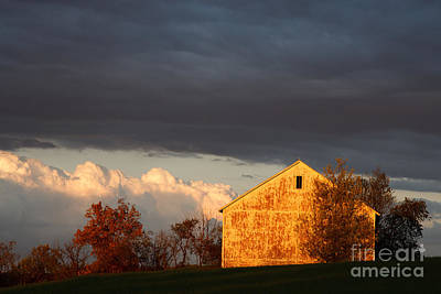 Art Print featuring the photograph Autumn Glow With Storm Clouds by Karen Lee Ensley