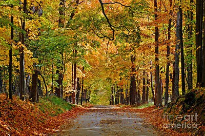 Metamora Photograph - Autumn Gold by Rodney Campbell