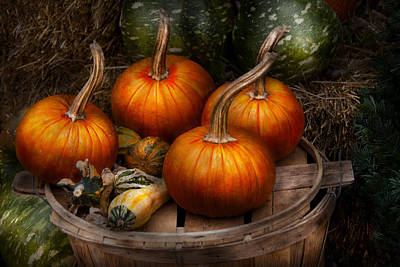 Autumn Scenes Photograph - Autumn - Gourd - Pumpkins And Some Other Things  by Mike Savad