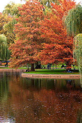 Photograph - Autumn Grace by Paul Mangold