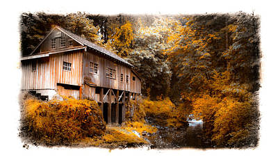 Photograph - Autumn Grist by Steve McKinzie
