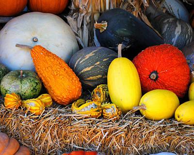 Photograph - Autumn Harvest 2 by Jai Johnson
