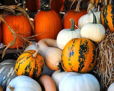 Photograph - Autumn Harvest 3 by Jai Johnson