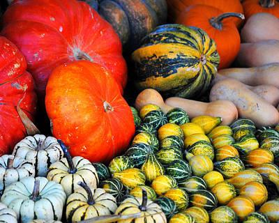 Photograph - Autumn Harvest 4 by Jai Johnson