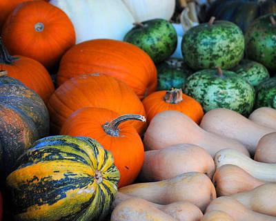 Photograph - Autumn Harvest 5 by Jai Johnson