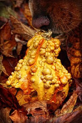 Autumn Harvest Camouflage Art Print