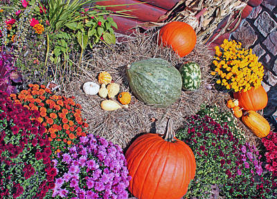 Photograph - Autumn Harvest by Janet Pugh