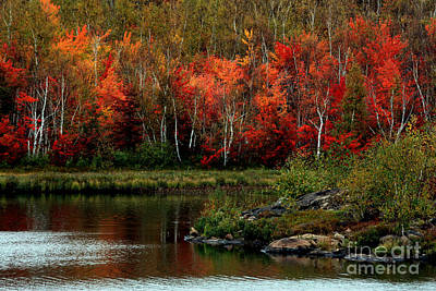 Autumn In Canada 2 Art Print by Marjorie Imbeau