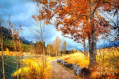 Photograph - Autumn In Canmore by Tara Turner