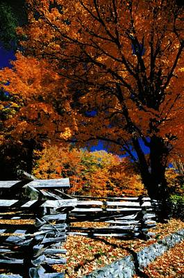 Autumn In Holderness Art Print by Rick Frost