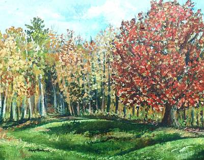 Maine Landscapes Painting - Autumn In My Backyard  by Shana Rowe Jackson