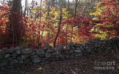 Photograph - Autumn In New England by Michelle Welles
