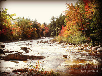 Photograph - Autumn In New Hampshire by Crystal Joy Photography