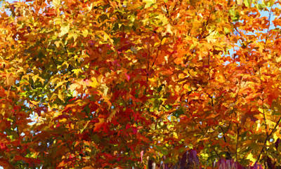 Autumn In October Art Print by Anthony Rego