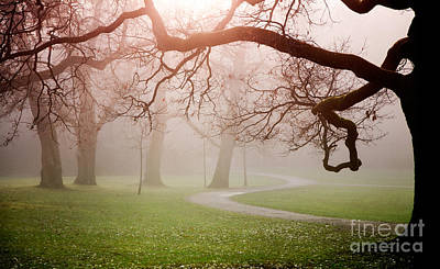 Photograph - Autumn In Park by Kati Molin