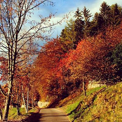 Mountain Wall Art - Photograph - Autumn In South Tyrol by Luisa Azzolini