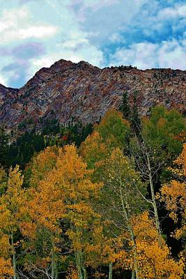 Sceneci Photograph - Autumn In The Mountains by Bruce Bley