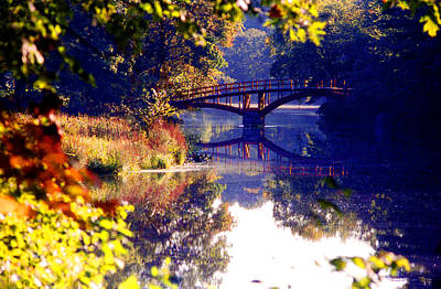 Photograph - Autumn In The Park by Emanuel Tanjala