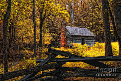Photograph - Autumn In The Smokies by Gina Cormier