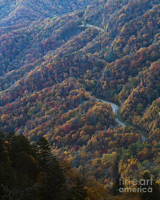 Photograph - Autumn In The Smoky Mountains by Dennis Hedberg