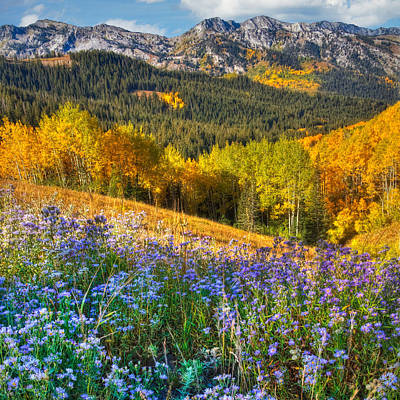 Photograph - Autumn In The Wasatch Mountains by Utah Images
