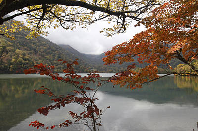 Photograph - Autumn Lake by Masami Iida