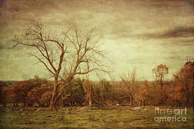 Photograph - Autumn Landscape/digital Painting  by Sandra Cunningham