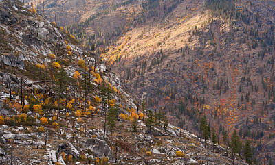 Photograph - Autumn Layers by Mike Reid