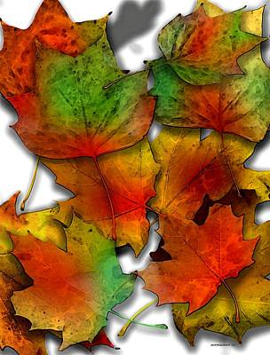 Effect Photograph - Autumn Leaf Art by Mario Perez