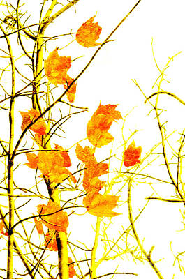 Fall Foliage Mixed Media - Autumn Leaves Abstract by Andee Design
