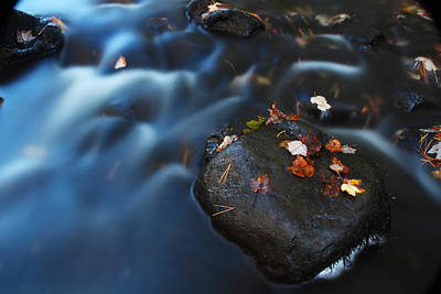 Photograph - Autumn Leaves In The Stream by Andrew Pacheco