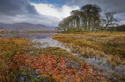 Autumn Leaves Loch Awe Art Print