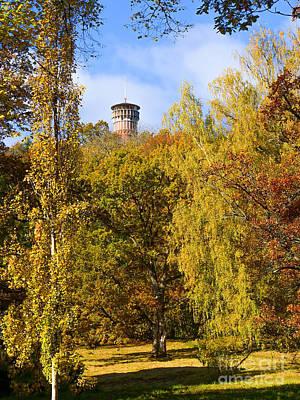 Photograph - Autumn Lookout by Lutz Baar