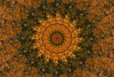 Digital Art - Autumn Mandala 1 by Rhonda Barrett
