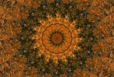 Keith Richards - Autumn Kaleidoscope 1 by Rhonda Barrett
