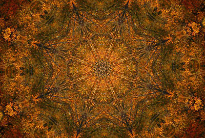 Digital Art - Autumn Mandala 2 by Rhonda Barrett