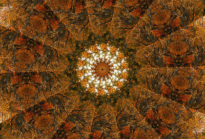 Digital Art - Autumn Mandala 4 by Rhonda Barrett