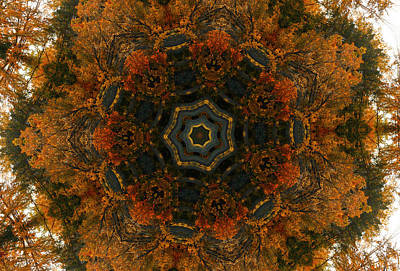Digital Art - Autumn Mandala 5 by Rhonda Barrett