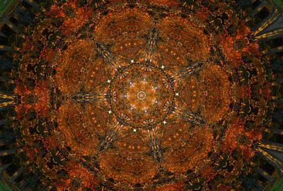 Digital Art - Autumn Mandala 9 by Rhonda Barrett