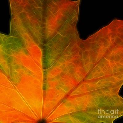 Autumn Maple Leaf - Square Art Print