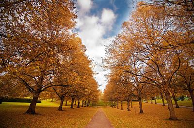 Autumn Art Print by Micael  Carlsson