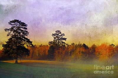 Autumn Morning Mist Art Print by Judi Bagwell
