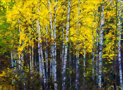 Photograph - Autumn Mosaik by Vladimir Kholostykh